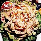 野菜たね チコリ カステルフランコ 1袋(5ml入)