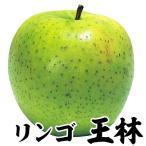 リンゴ 苗木 王林 1株 / りんご 林檎 苗 リンゴの苗木 リンゴの木 果樹苗 国華園