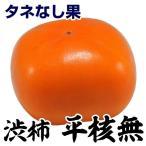 果樹苗 渋柿 平核無 1株