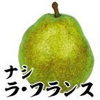 果樹苗 ナシ ラ・フランス 1株