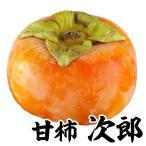 果樹苗 甘柿 次郎 1株