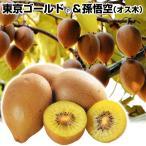 果樹苗 キウイ 東京ゴールド&孫悟空(黄肉用オス木) 2種2株