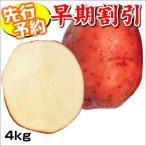 【早期予約】じゃがいも種芋 ベニアカリ 4kg