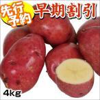 【早期予約】じゃがいも種芋 レッドムーン 4kg