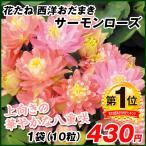 種 花たね 西洋おだまき サーモンローズ 1袋(10粒) / 花種 花の種 はなたね セイヨウオダマキ 西洋苧環