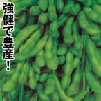 野菜たね 枝豆 あじまつり 1袋(30ml)