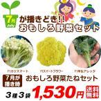送料無料 野菜たね 7月蒔どきおもしろ野菜たねセット 3種3袋