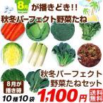 送料無料 野菜たね 8月蒔どき秋冬パーフェクト野菜セット 10種10袋
