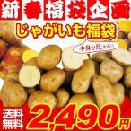新春初売りセール 送料無料 インカのめざめp+インカのひとみp+キタアカリ+メークイン+男爵芋セット 5種4kg