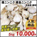 ニンニク 種球 霧島ニンニク(種球 ・国産) 5kg