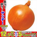 種 野菜たね タマネギ F1つり玉パーフェクト 1袋(5ml入)