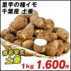 種いも 里いも 千葉産 土垂 1kg / さといも サトイモ たね芋 たねいも
