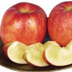 果樹苗 リンゴ こうとく 1株 / 果物苗 フルーツ苗 林檎 りんご