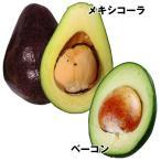 果樹苗 アボカド 寒さに強いアボカドセット 2種2株 / 果物 フルーツ苗