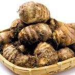 種いも 里いも 土垂 里芋    3kg / さといも サトイモ たね芋 たねいも