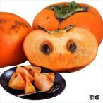 果樹苗 在庫処分 セール 通常価格の半額 カキ 恋姫 1株 / 果物苗 フルーツ苗