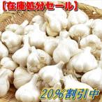 【在庫処分】ニンニク種球 福地ホワイト六片 500g /「20%割引」