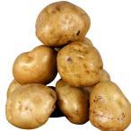 じゃがいも種芋 男爵薯 4kg