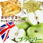 果樹苗 リンゴ クッキングアップル ブラムリー 1株 / りんご 林檎 リンゴ苗 りんご苗 苗 苗木 リンゴの苗 アップルパイ 加工 国華園
