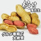 種 野菜たね 落花生 Qなっつ(千葉P114号P) 1袋(25ml) / 野菜のタネ 野菜 種子 国華園