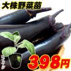 大株野菜苗 中長ナス 千両二号 4号ポット 1株
