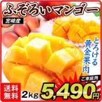 マンゴー 宮崎産 ふぞろい アップルマンゴー(2kg)1kg×2箱 4〜16玉 ご家庭用 芒果 フルーツ 国華園