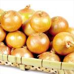 たまねぎ お買得 佐賀産 たまねぎ(10kg)S〜2L 玉葱 じゃがいも 野菜 国華園
