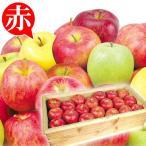 食品 青森産 お買得 おまかせ赤りんご 約20kg 木箱 1組 りんご 国華園