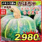 食品 大特価 メキシコ産他 かぼちゃ 10kg 1組 野菜 国華園