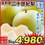 梨 長野産 二十世紀梨(5kg)ご家庭用 産地直送 にじゅっせいき なし 和梨 フルーツ くだもの 食品 国華園