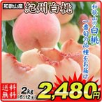桃 和歌山産 紀州白桃(2kg)6〜12玉 ご家庭用 品種おまかせ もも ピーチ フルーツ 国華園