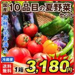 国産 10品目の夏野菜セット(ピーマン・ナス・キュウリ・トマト・ししとう・ゴーヤ・とうもろこし・オクラ・枝豆・ニラ) 冷蔵 国華園