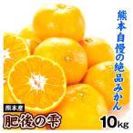みかん 熊本産 肥後の雫(10kg)S〜2L混合 ご家庭用 柑橘 かんきつ フルーツ 国華園