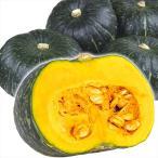 北海道産 他かぼちゃ 10kg 1箱