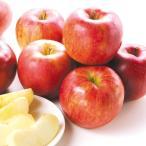 りんご 長野産 シナノスイート(5kg)14〜20玉 信州 林檎 フルーツ 国華園