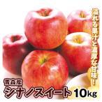 りんご 長野産 シナノスイート(10kg)28〜40玉 信州 林檎 フルーツ 国華園