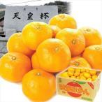 みかん 愛媛産 川上みかん(9kg)2L 大玉 天皇杯受賞産地 柑橘 かんきつ フルーツ 国華園
