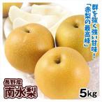 梨 長野産 南水梨(5kg) ご家庭用 なんすい 希少品種 なし 和梨 果物 フルーツ 国華園