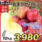 りんご 秋田・岩手産 おまかせりんご(10kg) 24〜56玉 フルーツ 果物 国華園