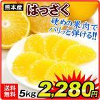 柑橘 みかん 熊本産 ご家庭用 はっさく 5kg1箱 果物 フルーツ 国華園