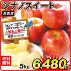 りんご 青森産 大特価 シナノスイート 5kg1箱 林檎 果物 フルーツ 国華園