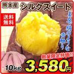 さつまいも 熊本産 シルクスイート(10kg)ご家庭用 高糖度 焼き芋 甘い サツマイモ 薩摩芋 野菜 国華園