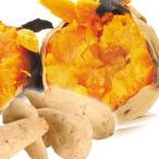 鹿児島産 人参芋  2kg1箱 国華園 さつまいも サツマイモ 芋