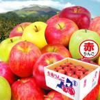 お買得 青森産 お任せ赤りんご 10kg 国華園 りんご リンゴ