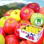 お買得 青森産 お任せ青りんご 10kg 国華園 りんご リンゴ