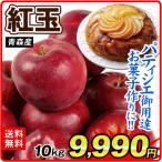 青森産 紅玉 10kg 1箱 国華園 りんご リンゴ