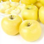 青森産 シナノゴールド10kg 1箱 国華園 りんご リンゴ