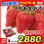 早割 インターネット限定  福岡産 あまおう 4パック ご家庭用 いちご イチゴ