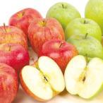 食品 青森産りんごセット ふじ&王林 10kg(各5kg) 1組 りんご 国華園