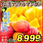 マンゴー 台湾産 ご家庭用 アップルマンゴー 約3kg 1組 南国フルーツ 食品 国華園